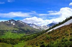 阿拉斯加的山景 库存图片
