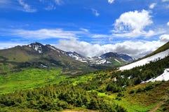 阿拉斯加的山景 免版税图库摄影