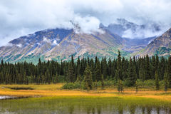 阿拉斯加的山脉视图在Denali的 图库摄影