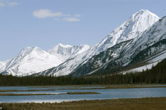 阿拉斯加的山脉 免版税库存照片