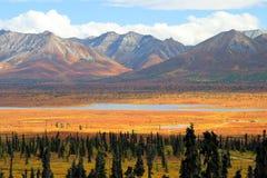 阿拉斯加的湖 库存照片