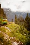 阿拉斯加的火车游览 库存图片
