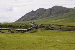 阿拉斯加的输油管 库存照片