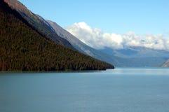 阿拉斯加的风景 库存照片