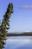 阿拉斯加的Mountain湖风景在秋天 免版税库存图片