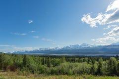 阿拉斯加的Wrangells 免版税库存照片