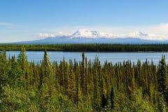 阿拉斯加风景 库存图片