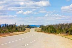阿拉斯加高速公路春天 免版税库存照片
