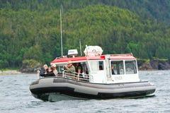 阿拉斯加-小船鲸鱼注意 免版税库存图片