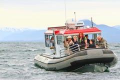 阿拉斯加-注意2的小船鲸鱼 免版税图库摄影
