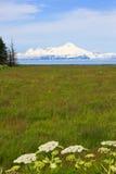 阿拉斯加-火山挂接伊里亚姆纳湖 库存图片