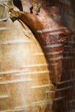 阿拉斯加-从纸皮桦树的削皮吠声 图库摄影