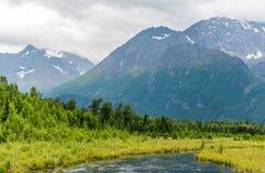 阿拉斯加` s动作缓慢Eagle河和楚加奇山 免版税库存图片