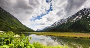 阿拉斯加` s Chugach国家森林 免版税库存图片