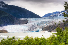 阿拉斯加` s Mendenhall冰川在朱诺 免版税库存照片