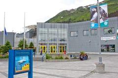 阿拉斯加- Seward阿拉斯加海洋生活中心2 库存照片
