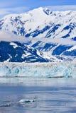 阿拉斯加Hubbard冰川St.伊莱亚斯山 免版税库存图片