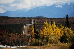 阿拉斯加mountained输油管多雪的trans 免版税库存图片