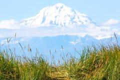 阿拉斯加Mt 里道特火山 免版税库存图片