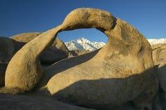 阿拉巴马小山成拱形构筑的惠特尼峰和多雪的山脉山在日出靠近孤立杉木,加州 免版税库存图片