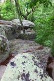 阿拉巴马cheaha公园状态 免版税库存图片