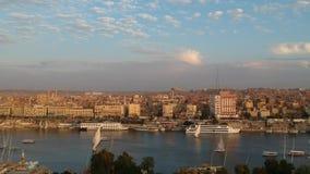 阿斯旺埃及寄生虫英尺长度从笨拙海岛的 股票录像