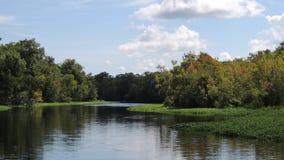 阿斯特佛罗里达圣约翰斯河 库存照片