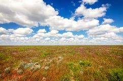 阿斯特拉罕干草原在美丽的天空下 自然全景在盐湖Baskunchak附近的 免版税库存图片