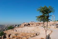 阿曼,约旦,中东 图库摄影