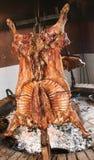阿根廷羊羔s样式 免版税图库摄影