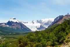 阿根廷fitz巴塔哥尼亚roy 免版税库存照片