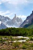阿根廷fitz巴塔哥尼亚roy 免版税图库摄影