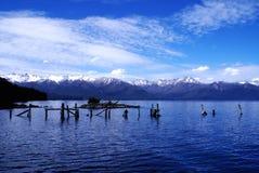 阿根廷huapi湖nahuel巴塔哥尼亚 免版税图库摄影