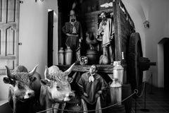 阿根廷印第安人混血儿雕象 库存照片