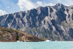 阿根廷湖 图库摄影