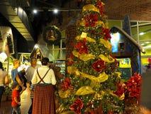 阿根廷的圣诞节季节 免版税图库摄影