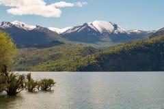 阿根廷美好的横向本质巴塔哥尼亚 免版税库存照片
