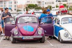 阿格德,法国- 2017年9月9日:紫罗兰色 免版税图库摄影