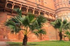 阿格拉,印度,庭院,大厦的元素德里红堡 免版税库存照片