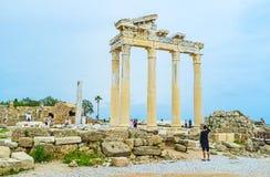 阿波罗寺庙的专栏在边的 免版税库存照片