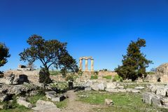 阿波罗教堂柱子从考古学废墟下面观看了下来在古老科林斯湾希腊 库存图片