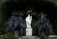 阿波罗雕象 库存图片