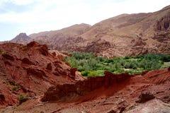 阿特拉斯山脉的典型的巴巴里人村庄丝毫oasisi在摩洛哥 免版税库存图片