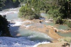 阿瓜azul墨西哥瀑布 免版税库存图片