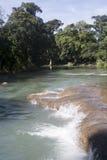 阿瓜azul墨西哥瀑布 免版税图库摄影