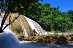 阿瓜Azul瀑布,恰帕斯州,墨西哥 免版税库存照片