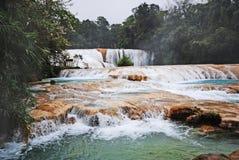 阿瓜Azul瀑布, Chiapas,墨西哥 库存照片