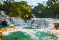 阿瓜Azul,恰帕斯州,帕伦克,墨西哥 惊人的瀑布的看法与绿色树围拢的绿松石水池的 免版税库存照片