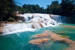 阿瓜azules墨西哥palenque 库存图片