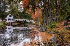 阿科底亚国家公园在秋天 库存图片